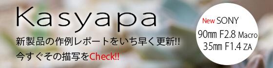 カシャパ kasyapa 新製品のフォトプレビュー 試写レボートサイト