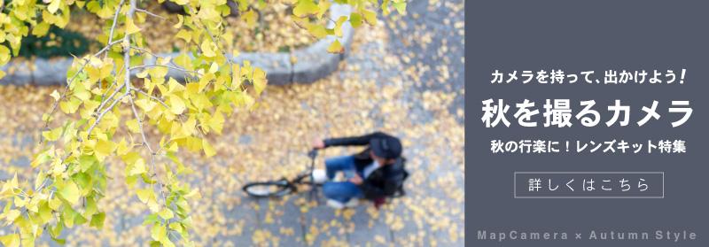秋のレンズキット特集