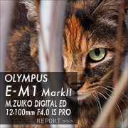 OLYMPUS OM-D E-M1 MarkII フォトプレビュー