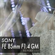SONY (ソニー)FE 85mm F1.4 GMフォトプレビュー