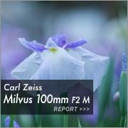 Carl Zeiss (カールツァイス) Milvus 100mm F2 M ZF.2フォトプレビュー