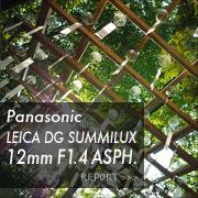 Panasonic (パナソニック) LEICA DG SUMMILUX 12mm F1.4 ASPH.フォトプレビュー