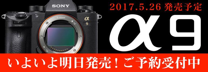 α9予約開始!発売日にお届け!