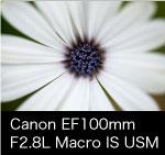 Canon EF100mmのKasyapaはこちら