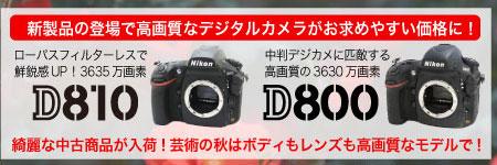 Nikon D810/D800