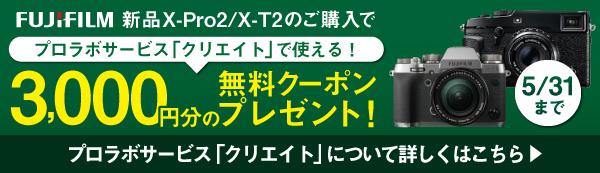 フジフイルムプロラボサービス「クリエイト」の無料クーポンプレゼント!