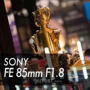 SONY (ソニー)FE 85mm F1.8フォトプレビュー