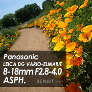 Panasonic (パナソニック) LEICA DG VARIO-ELMARIT 8-18mm F2.8-4.0 ASPH.フォトプレビュー