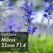 Carl Zeiss (カールツァイス) Milvus 35mm F1.4フォトプレビュー
