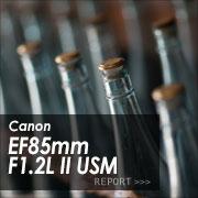 Canon EF 85mm F1.2L II USM フォトプレビューはこちら
