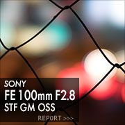 SONY (ソニー)FE 100mm F2.8 STF GM OSSフォトプレビュー