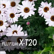 FUJIFILM (フジフイルム) X-T20フォトプレビューはこちら