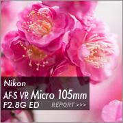 Nikon AF-S VR Micro 105mm F2.8G EDフォトプレビュー