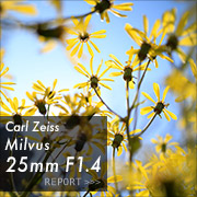 Carl Zeiss (カールツァイス) Milvus 25mm F1.4 ZF.2フォトプレビュー