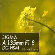 SIGMA A 85mm F1.4 DG HSMフォトプレビュー
