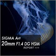 SIGMA Art 20mm F1.4 DG HSM フォトプレビュー