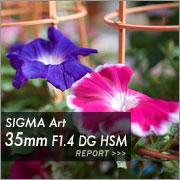 SIGMA Art 35mm F1.4 DG HSM フォトプレビュー