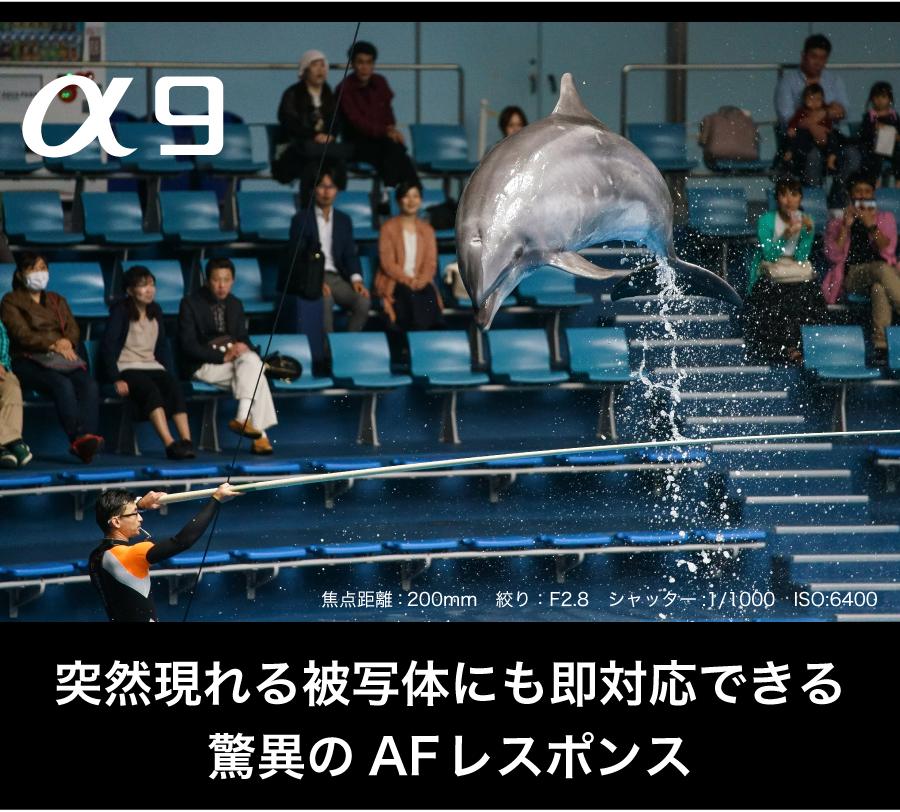 SONY_a9_AF/AE