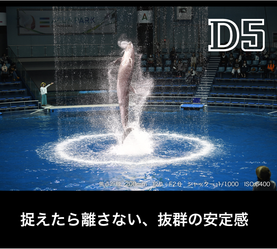 Nikon_D5_AF/AE
