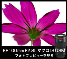 EF100mm F2.8L マクロ IS USM Kasyapa