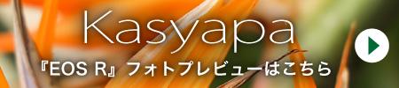 Kasyapa