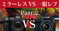 Canon 3000万画素対決 EOS R VS EOS 5D Mark IV