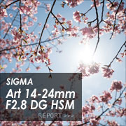 SIGMA Art 14-24mm F2.8 DG HSM フォトプレビュー