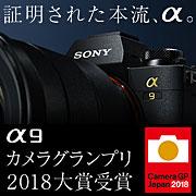 SONY (ソニー) α9 カメラグランプリ2018大賞受賞!