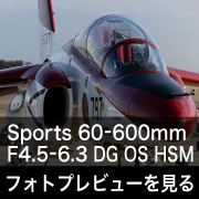 SIGMA Sports 60-600mm F4.5-6.3 DG OS HSMフォトプレビュー