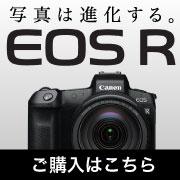 Canon EOS R 特集記事を見る