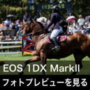 Canon EOS-1DX MarkII フォトプレビューはこちら