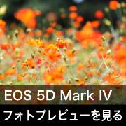 Canon EOS 5D Mark IVフォトプレビューはこちら。