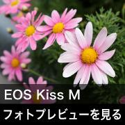 Canon EOS Kiss M フォトプレビューはこちら