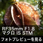 RF35mm F1.8 マクロ IS STM フォトプレビューはこちら