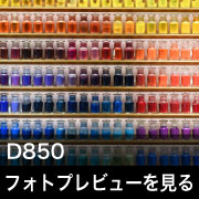 Nikon D850 フォトプレビュー