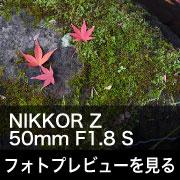 Nikon NIKKOR Z 50mm F1.8 S フォトプレビュー