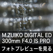 OLYMPUS (オリンパス) M.ZUIKO DIGITAL ED 300mm F4.0 IS PRO フォトプレビュー
