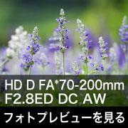 PENTAX HD D FA*70-200mm F2.8ED DC AW フォトプレビュー
