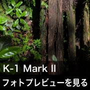 PENTAX K-1 MarkII フォトプレビュー