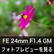 SONY (ソニー) FE 24mm F1.4 GM フォトプレビュー
