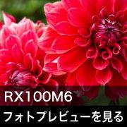 SONY (ソニー) RX100M6フォトプレビュー