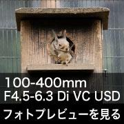 TAMRON (タムロン) 100-400mm F4.5-6.3 Di VC USDフォトプレビュー