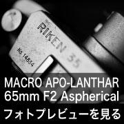 Voigtlander MACRO APO-LANTHAR 65mm F2 Aspherical フォトプレビュー