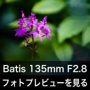 Carl Zeiss (カールツァイス) Batis 135mm F2.8 フォトプレビュー