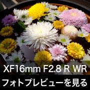 FUJIFILM XF16mm F2.8 R WRフォトプレビューはこちら