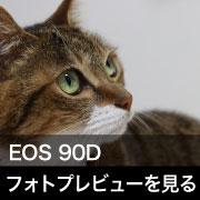 Canon EOS 90D フォトプレビューはこちら