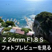 Nikon NIKKOR Z 24mm F1.8 S フォトプレビュー