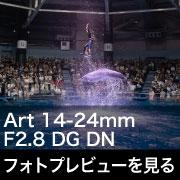 SIGMA Art 14-24mm F2.8 DG DN フォトプレビュー