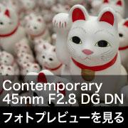 SIGMA Contemporary 45mm F2.8 DG DN フォトプレビュー