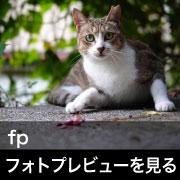 SIGMA fp フォトプレビュー